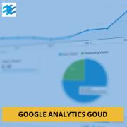 Google Analytics vast bedrag